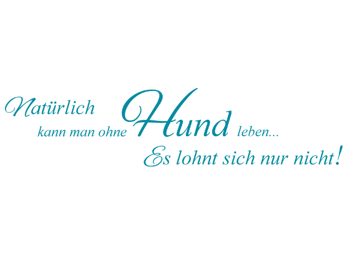Wandtattoo Name in türkis