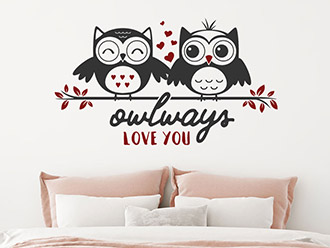 Wandtattoo Owlways love you