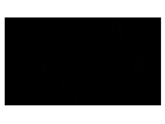 Ansicht Magnolien als Wandtattoo