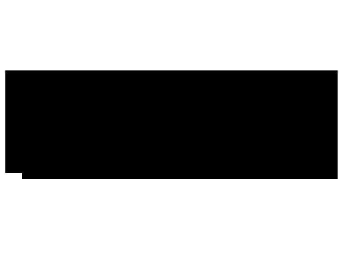 Ansicht Banner Palmenblatt als Wandtattoo