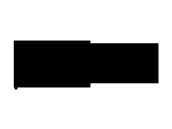 Ansicht Sternzeichen Zwilling als Wandtattoo