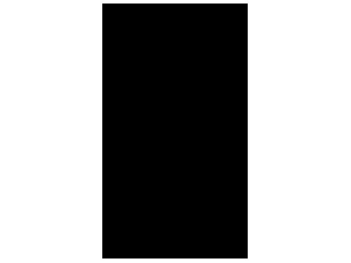 Ansicht Calla Blüten als Wandtattoo