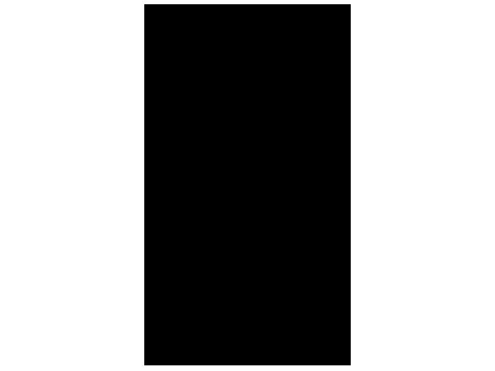 Ansicht Bambusstrauch als Wandtattoo