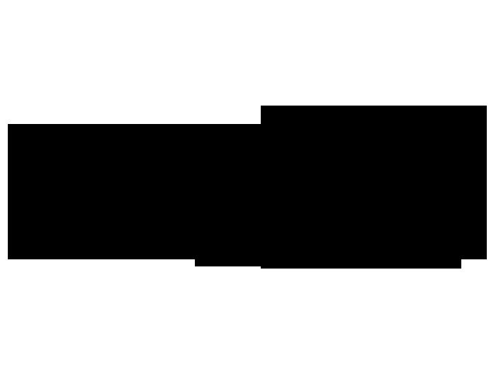 Ansicht Nachtschwärmer als Wandtattoo