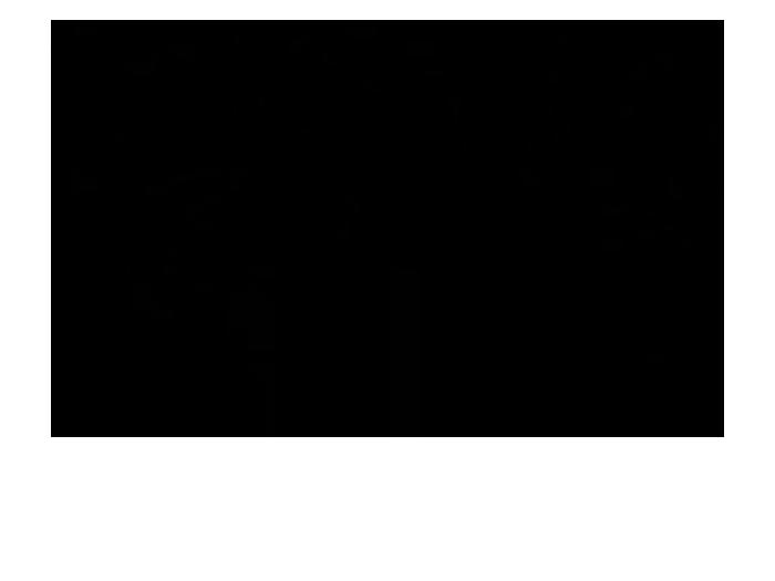 Ansicht Birkenwald als Wandtattoo