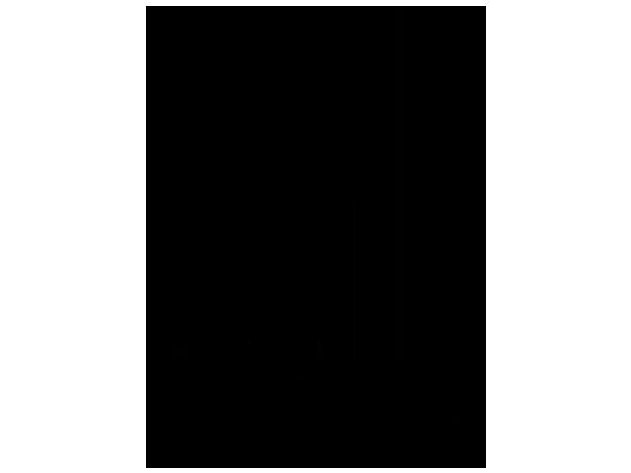 Ansicht Bär mit Wunschname als Wandtattoo