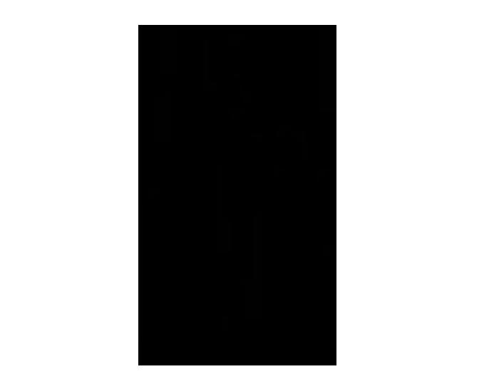 Ansicht Fotobaum zweifarbig als Wandtattoo