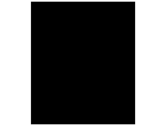 Ansicht Hirsch mit Hirschkalb als Wandtattoo