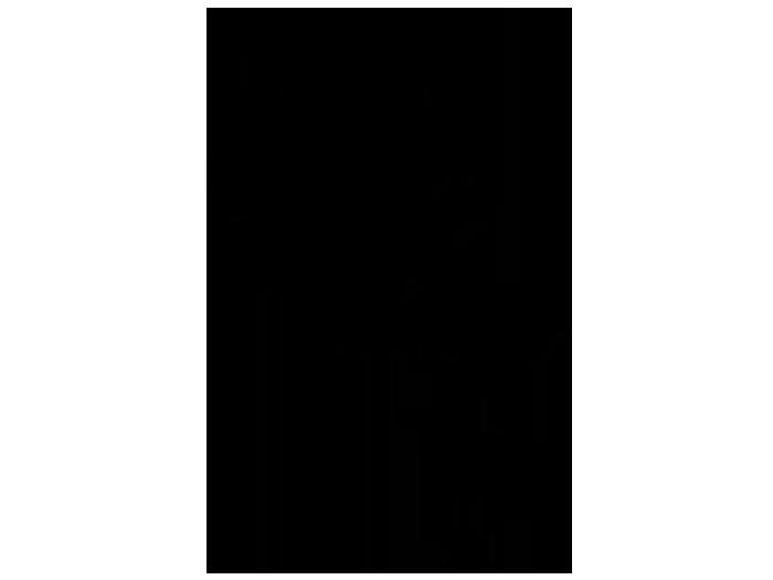 Ansicht Garderobe Ahornbaum als Wandtattoo