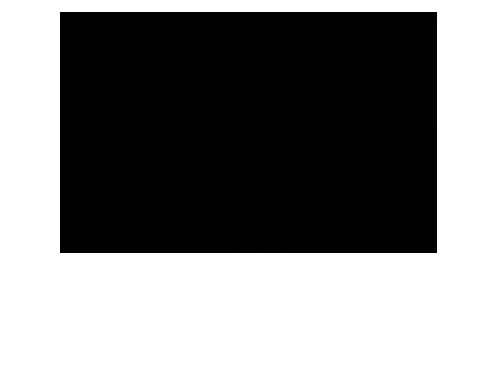 Ansicht Zweifarbiger Ahornbaum als Wandtattoo