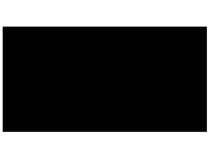 Ansicht Mops mit Wunschname als Wandtattoo