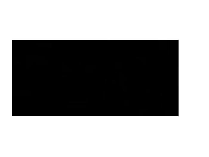 Ansicht Kirschblütenzweig als Wandtattoo