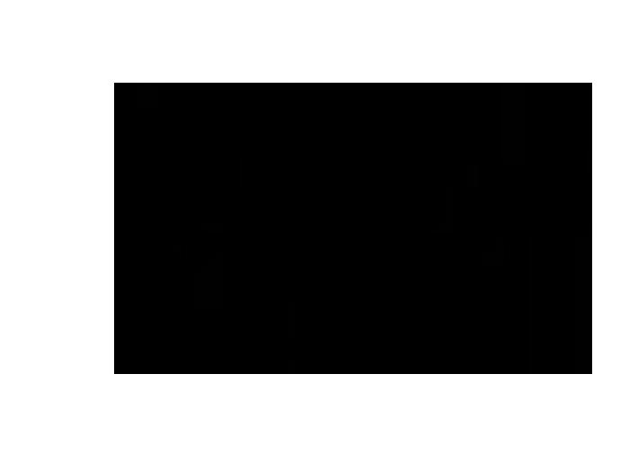 Ansicht Zweifarbiger Ast als Wandtattoo