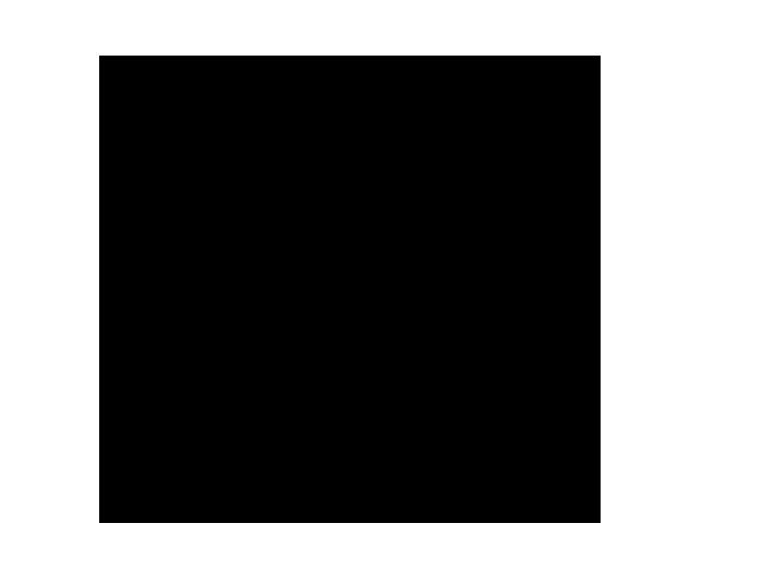 Ansicht Anfangsbuchstabe mit Name als Wandtattoo