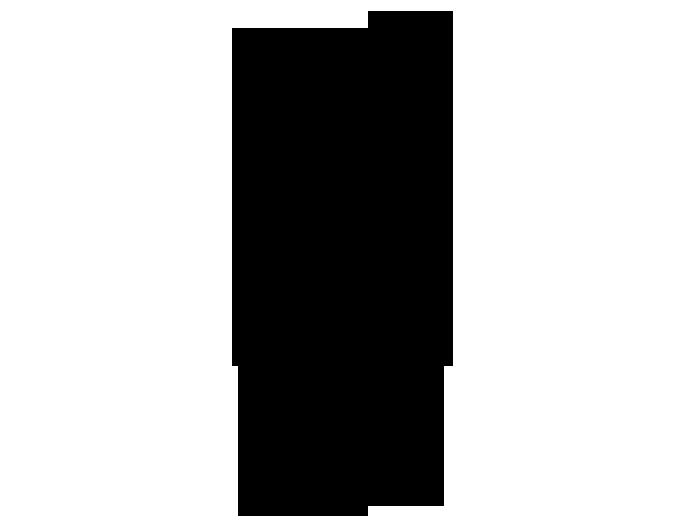 Ansicht Pferde Silhouette mit Name als Wandtattoo