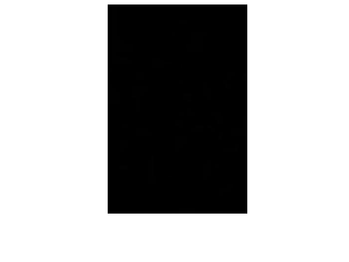 Ansicht Zweifarbiger Baum als Wandtattoo