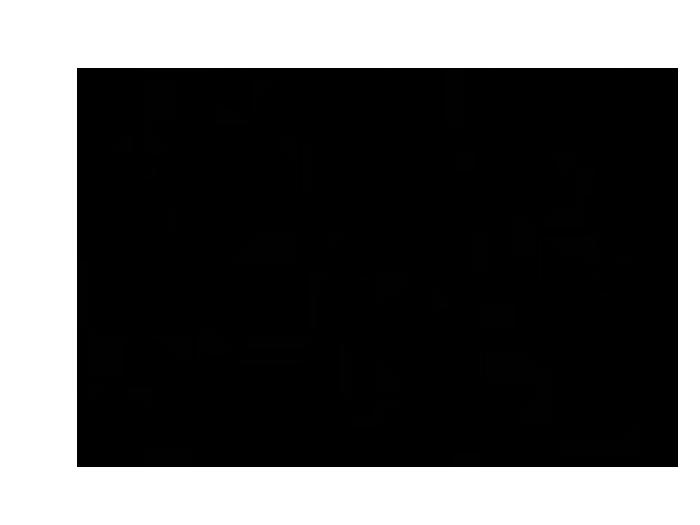 Ansicht Zweifarbiger Ast mit Vögeln als Wandtattoo