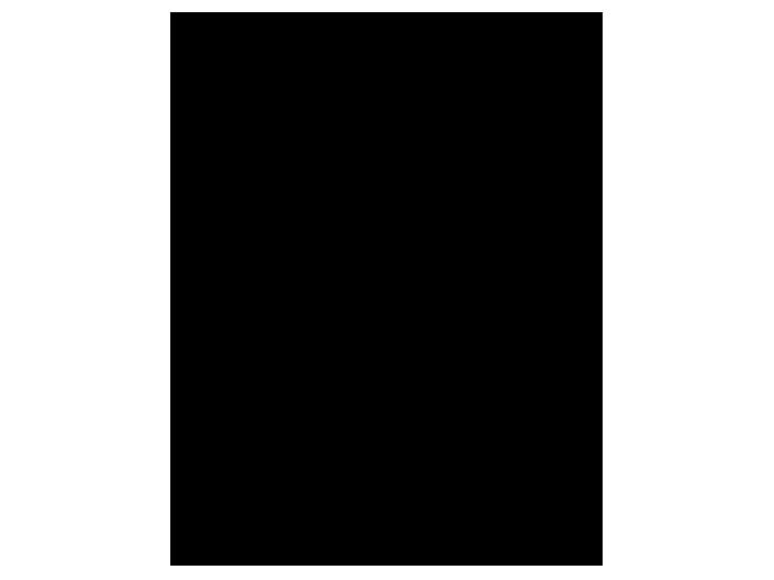 Ansicht Hirschkopf Platzhirsch als Wandtattoo