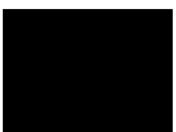 Ansicht Fotorahmen Pusteblume als Wandtattoo