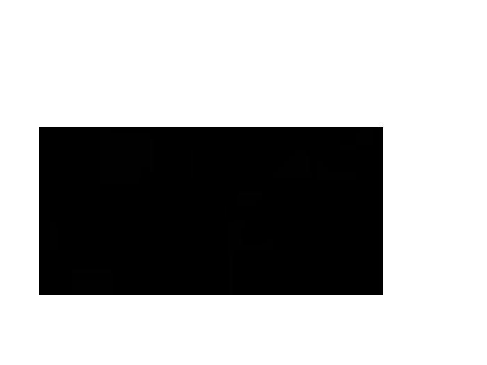 Ansicht Zweifarbiger Ast mit Fotorahmen als Wandtattoo