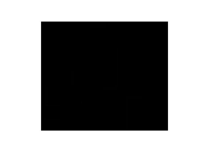 Ansicht Federn zweifarbig als Wandtattoo
