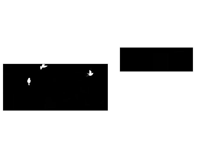 Ansicht Bezaubernde Mandelblütenzweige als Wandtattoo