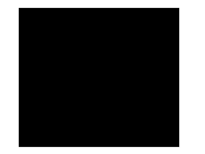 Ansicht Ast mit Laternen als Wandtattoo