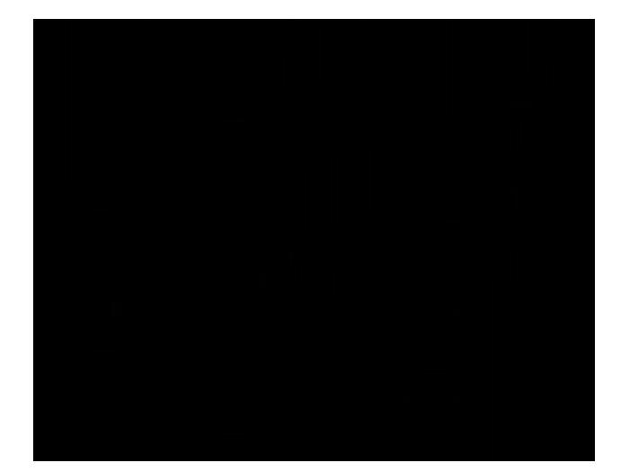 Ansicht Zweifarbige Gräser im Wind als Wandtattoo