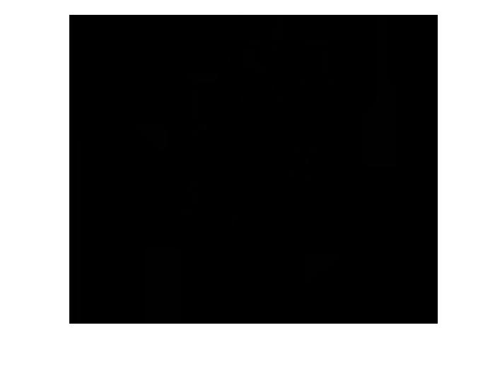 Ansicht Ahnenbaum als Wandtattoo