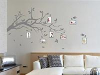 Wandtattoo Ast mit Fotorahmen in grau im Wohnzimmer