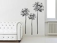 Blumen Wandtattoo Margeriten dezent in schwarz