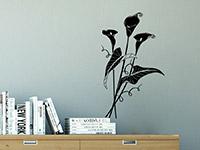 Wandtattoo Calla Blüten