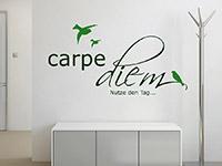 dekoratives Carpe Diem Wandtattoo mit Vögel