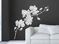 Blüten Wandtattoo Orchidee im Wohnzimmer in weiß