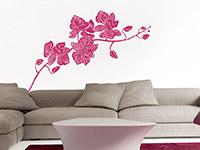 Wandtattoo Orchidee Blüten in pink