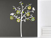 Wandtattoo Apfelbaum mit Fotorahmen