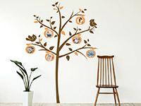 Wandtattoo Apfelbaum mit Fotorahmen im Flur