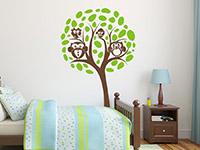 Eulen Wandtattoo Baum in braun und lindgrün