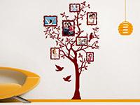 Fotorahmen Wandtattoo Baum für Fotos in rot