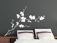 Wandtattoo Orchidee | Bild 2