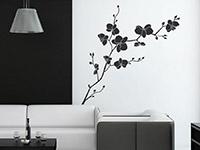 Blüten Wandtattoo Wilde Orchidee auf heller Wandfläche