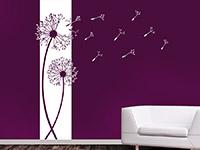 Banner Pusteblumen in weiß auf dunkler Wand
