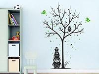 Eulen Wandtattoo Baum mit Vögeln und Herzen als kreative Wanddeko auf farbiger Wandfläche