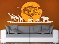 Wandtattoo Afrikanische Landschaft mit Sonne | Bild 4