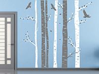 Wandtattoo Zweifarbige Birkenstämme | Bild 2