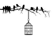 Garderobe Ast mit Vögeln und Blättern Motivansicht