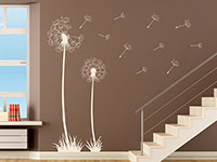 Wandtattoo Pusteblumen mit Samen auf hellem Hintergrund
