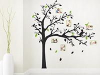 Wandtattoo Baum mit Fotorahmen und Katze