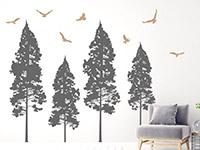 Wandtattoo Tannenwald mit Vögeln