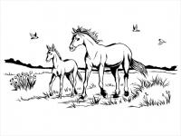 Wandtattoo Landschaft mit Stute und Fohlen Motivansicht
